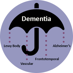 Illustration depicting the umbrella term 'dementia'. Underneath the umbrella, four common types of dementia are listed: Lewy Body, Vascular, Frontotemporal and Alzheimer's.